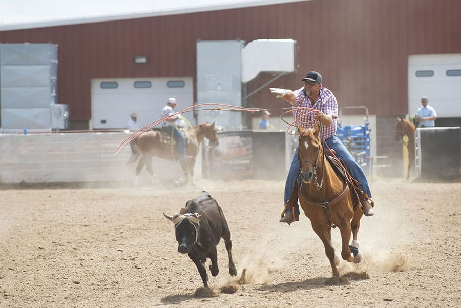 earn money photographing rodeos