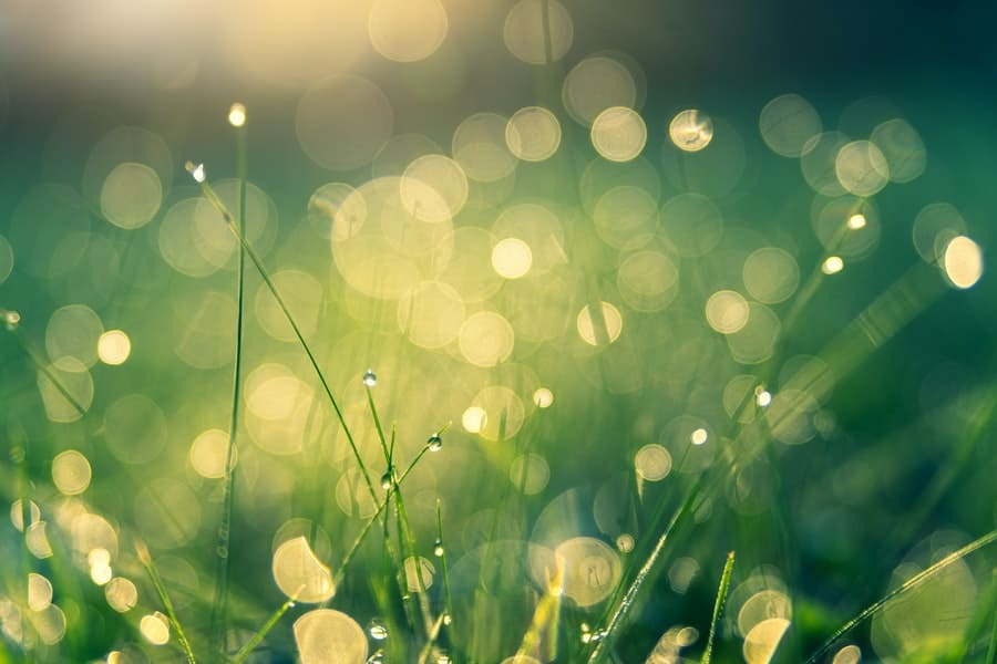 What is the definition of Bokeh?