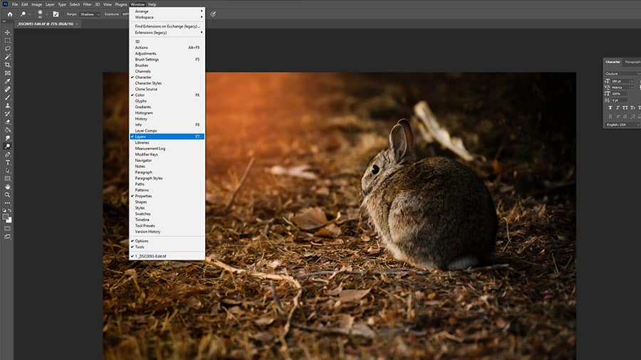 Open the Layers Panel in Photoshpp
